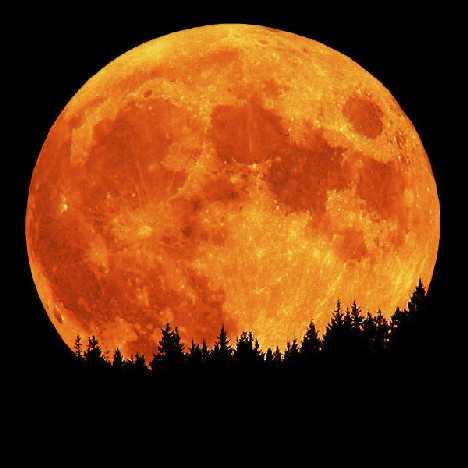 """Ma este csodálatos Szuperhold lesz! Valóban léteznek """"Holdkórosok""""?"""