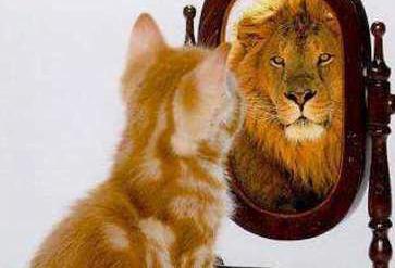 Gondolod hogy a tükör is ordít veled?