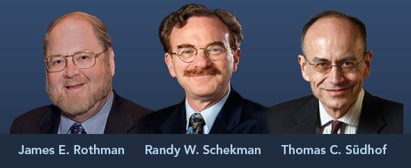 Két amerikai és egy német kapta az orvosi Nobel-díjat