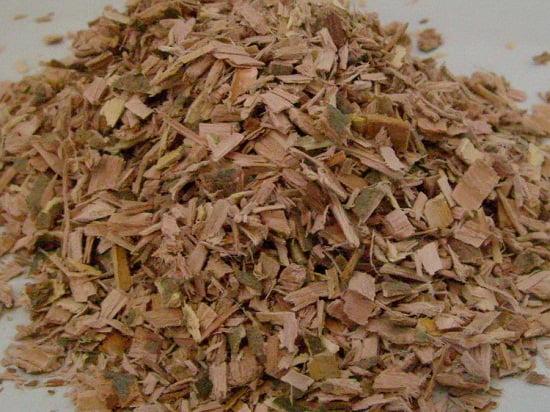 Így használd a fűzfakérget lumbágóra, ízületi fájdalmakra