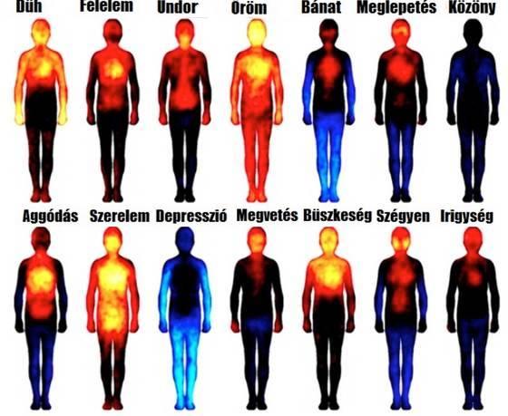 Testtérképeken sikerült kimutatni a pozitív és negatív érzelmeket