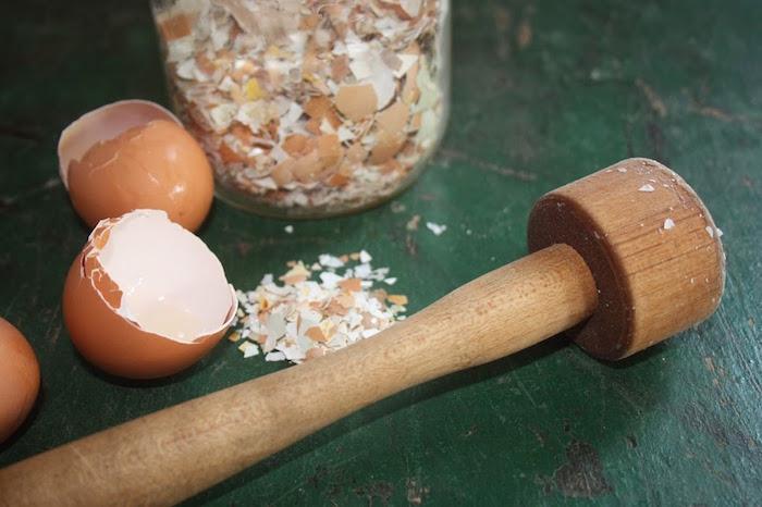 A tojáshéj felhasználásának 6 szokatlan módja! Gondoltad volna, hogy ennyi mindenre jó?