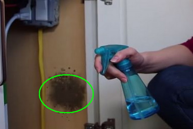 Hatékony penészeltávolító szer, amely szinte minden háztartásban jelen van!