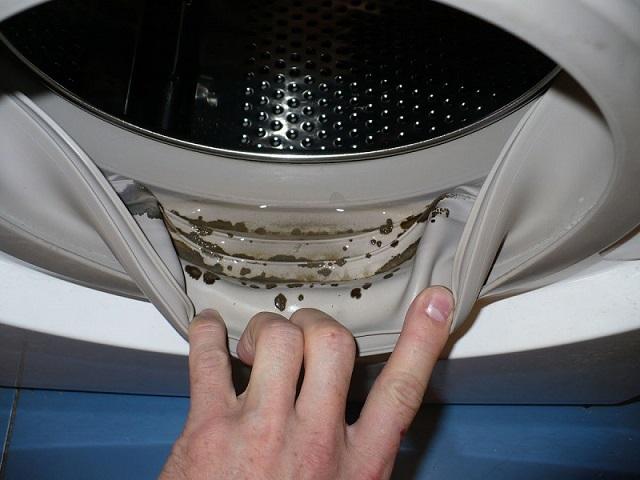 Hogyan szabaduljunk meg a mosógépben tanyázó penészgombáktól? Íme, a megoldás!