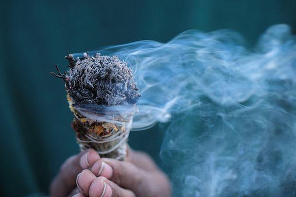 Ez a 7 mágikus gyógynövény elűzi otthonodból a negatív energiákat!