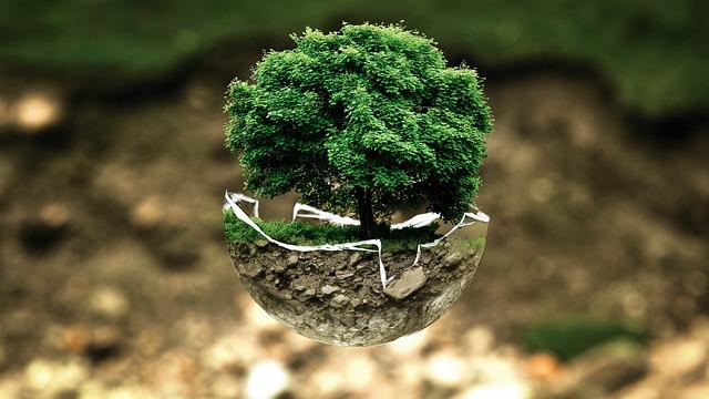 Thich Nhat Hanh: Szeretet levél a Földnek címezve!