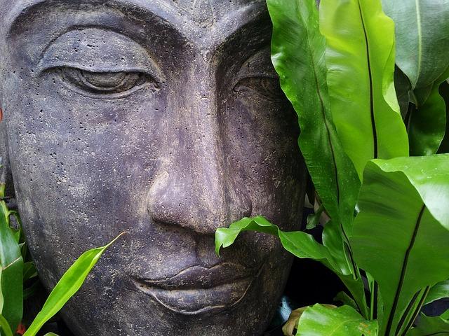 Az elengedés művészete: 6 ok, amiért érdemes megtanulni az elengedést!