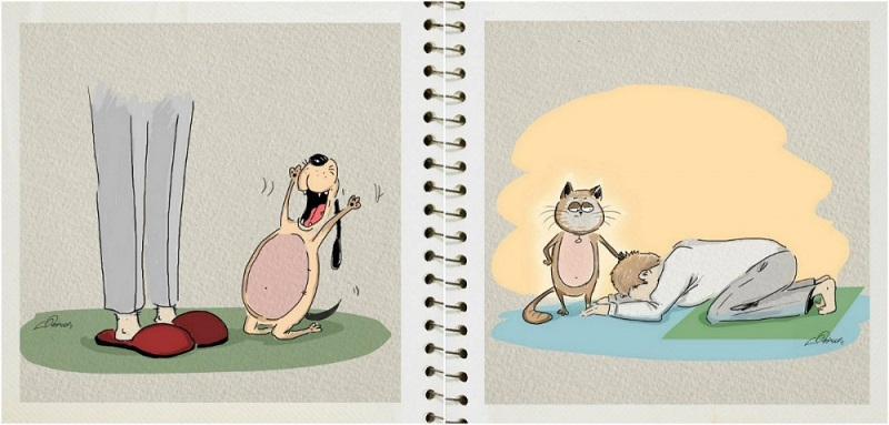 kutya-macska4