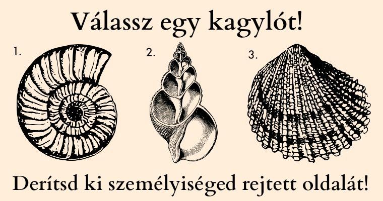 Válassz egy kagylót, majd olvasd el mit árul el személyiséged rejtett oldaláról!