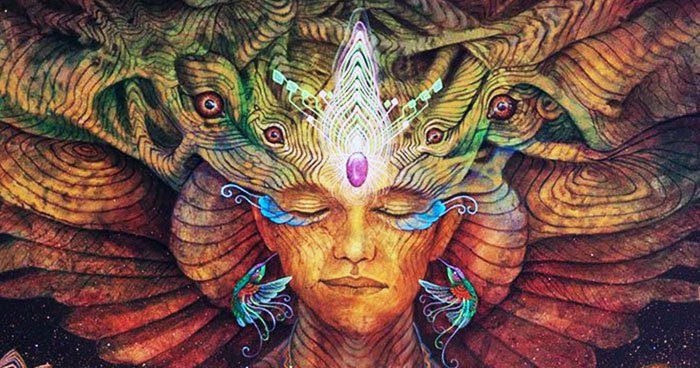 7 jel, ami arra utal, hogy sámáni képességekkel rendelkezel!