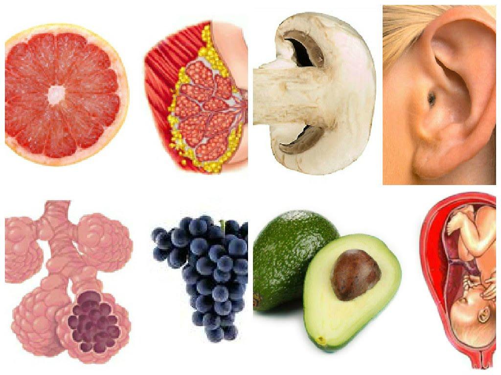 15 élelmiszer, melyek nemcsak hasonlítanak az emberi test szerveire, hanem jótékony hatással is vannak azokra!