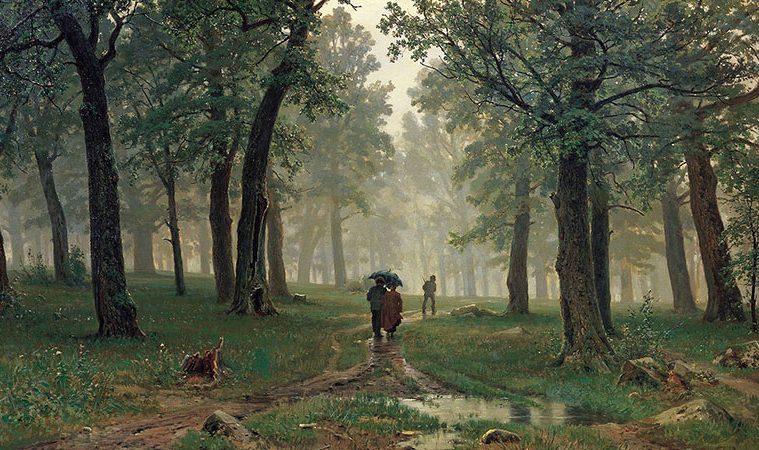 Séta az erdőben – A személyiségteszt, ami nagyon sok mindent elárul rólad
