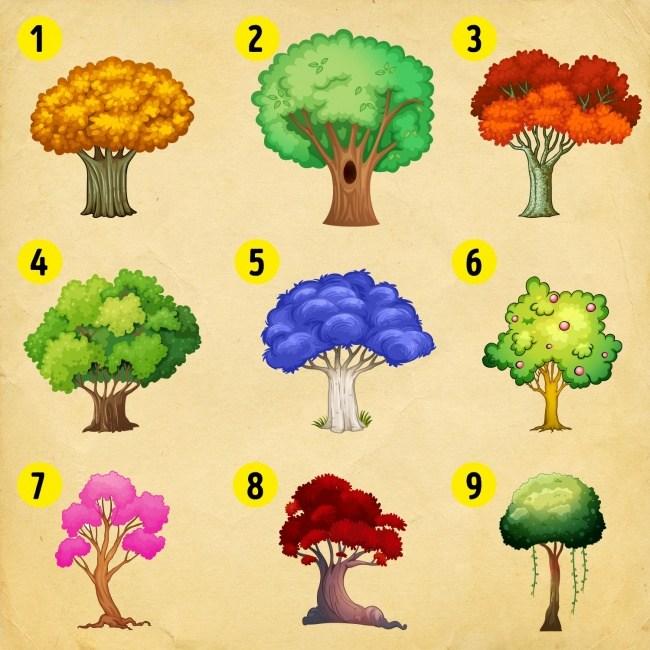 Pszichológiai teszt: Válassz egyet az alábbi fák közül, és megtudhatod, hogy mi vár rád az újévben!