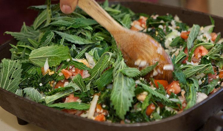 A saláta, amely megszabadít a méreganyagoktól és amely felfrissíti a vért!