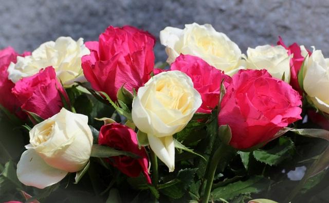 Tudd meg, mit jelképeznek a rózsák színűk szerint, hogy felfedezd a rejtett üzenetüket