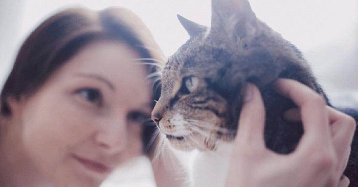 Kiábrándító, hogy mit gondolnak a macskák rólunk! A szakemberek magyarázata neked is csalódást fog okozni!
