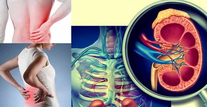 Ezekből az orvosi vizsgálatokból derülhet ki, hogy baj van a vesénkkel