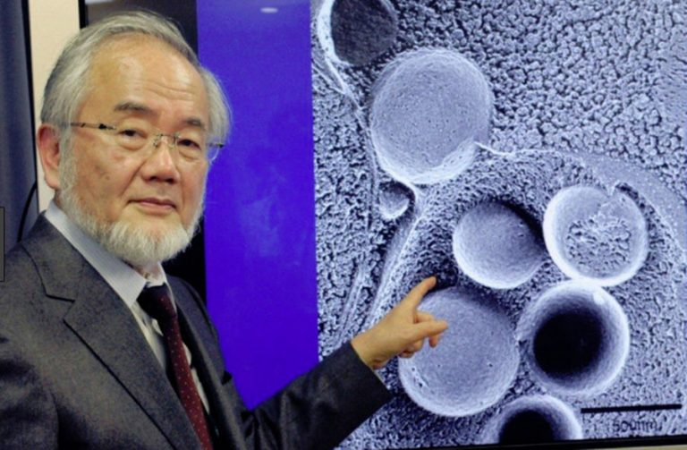 """Yoshinori Ohsumi Nobel-díjas kutató az általa feltalált étrendről: """"Segít a fogyásban és a sejtek regenerálódásában"""""""