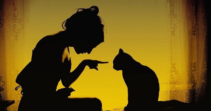 9 dolog, amit egy nő a macskától megtanulhatna!