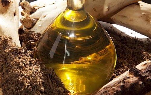 A Biblia gyógyító olajai – Szent füstölők és kenetek