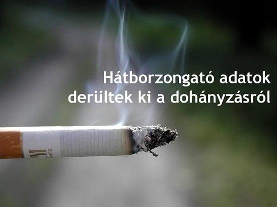 Hátborzongató adatok derültek ki a dohányzásról