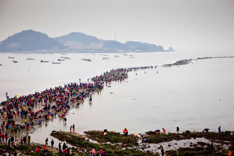 korea-tenger2