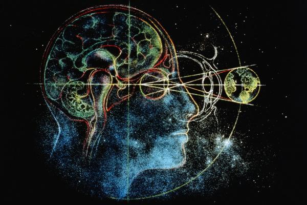 Mi a közös az Univerzumban, az internetben és az agyban? Valami lenyűgöző dolog!
