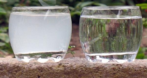 kloros-viz