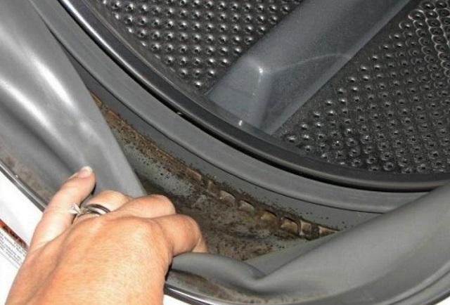 Szabadulj meg a mosógépben lévő penészgombáktól ezzel az eljárással