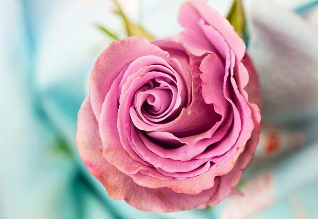 10 Feng Shui tipp, hogy bevonzd a szerelmet az életedbe!