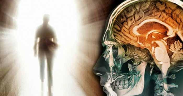 Mi történik az emberi aggyal a halál után? Hátborzongató dolgok derültek ki egy kutatás során!