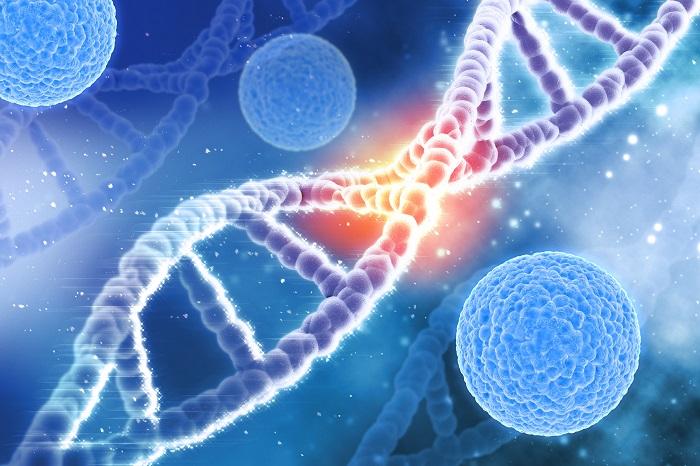 Az emberi DNS befolyásolható és átprogramozható szavak és frekvenciák által!