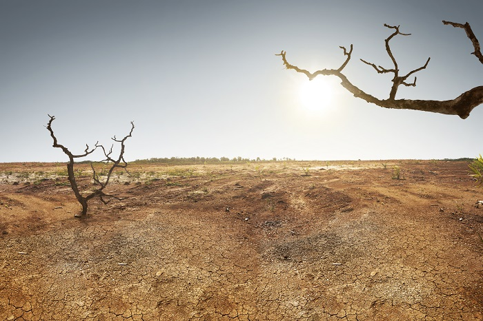 Egy tanulmány szerint 2050-re az emberi civilizáció el fog tűnni a Földről!