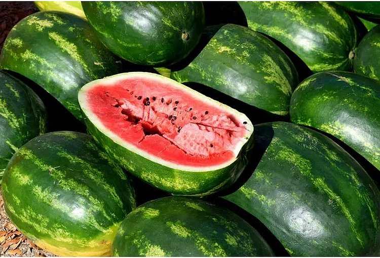 Bármennyire hihetetlen, a görögdinnye napjaink 'legmérgezőbb' gyümölcse lett