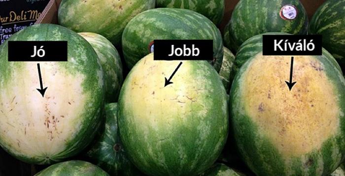 Így tudod kiválasztani a tökéletes görögdinnyét!