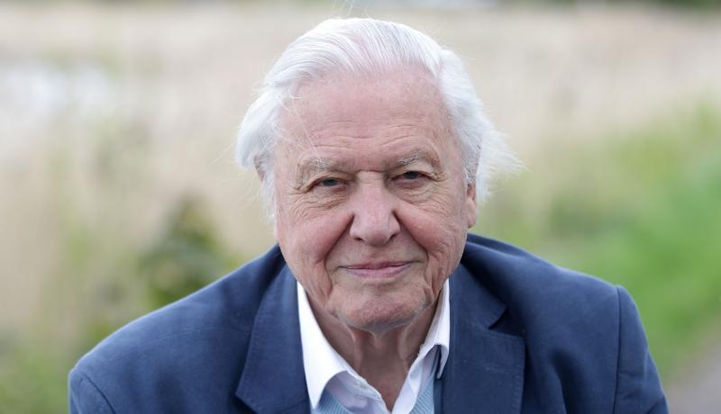 David Attenborough teljesen felhagyott a vörös hús evésével