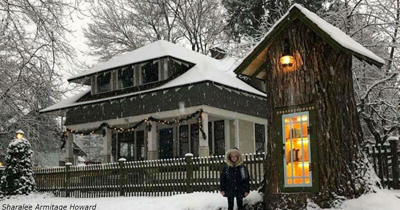 Egy 110 éves fából alakítottak ki szabadtéri könyvtárat